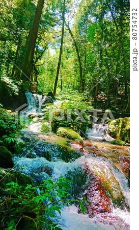 地元で人気のパワースポットの小さな滝 80754732