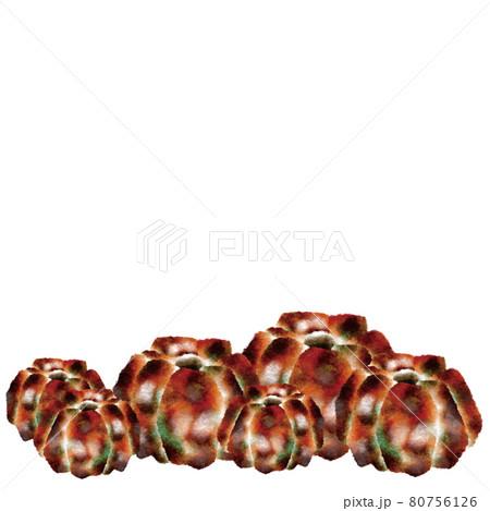 かぼちゃ 80756126