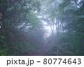 谷川岳登山の風景、天神尾根 80774643