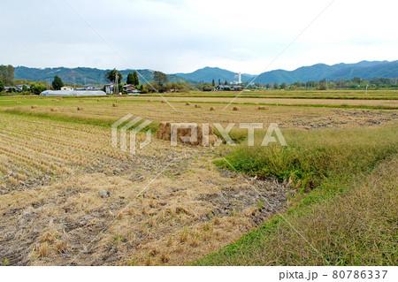 【長野】秋の安曇野 北アルプスの麓の田園風景 80786337