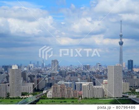 タワーホール船堀からの東京スカイツリー 東武アプリ 80796486