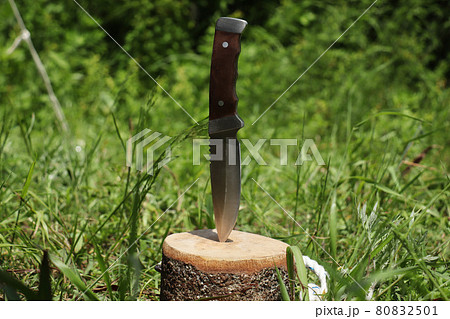 キャンプ用のフルタングのナイフ 80832501