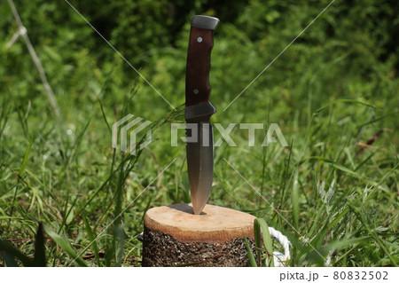 キャンプ用のフルタングのナイフ 80832502