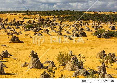 オーストラリア ナンバン国立公園のピナクルズ砂漠 80905136