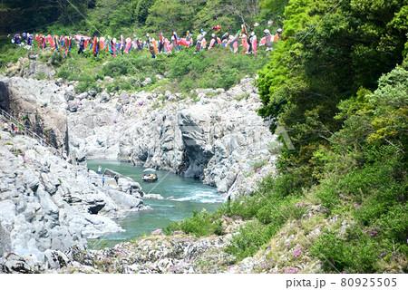 大歩危峡のこいのぼりと渓流くだり 80925505
