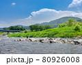 鮎友釣り風景 80926008