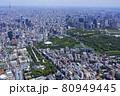 都市景観・北の丸公園周辺・空撮 80949445