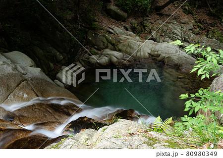鈴鹿山脈御在所岳の山麓にある三滝川渓谷の初夏の情景 80980349