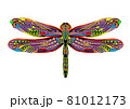 dragonfly ethnic illustration 81012173