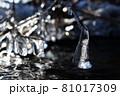 冬の屈斜路湖で見つけた氷の造形美 81017309