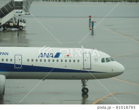 駐機中の航空機 雨の羽田国際空港 81018793