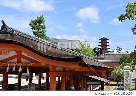 宮島 厳島神社回廊と五重塔千畳閣 81029024