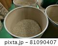 コーヒー豆 81090407