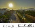 たんぼ 田んぼ 田圃 81151651