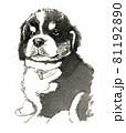 水彩画 犬 バーニーズマウンテンドッグ 81192890