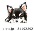 水彩画 犬 チワワ 81192892