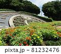 稲毛海浜公園日時計前の花壇の百日草の赤と黄色の花 81232476