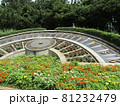 稲毛海浜公園日時計前の花壇の百日草の赤と黄色の花 81232479