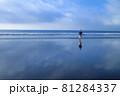 大洗のリフレクションビーチ 81284337