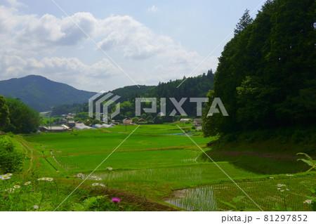 和歌山県にある日本らしさがある田んぼと山の風景 81297852