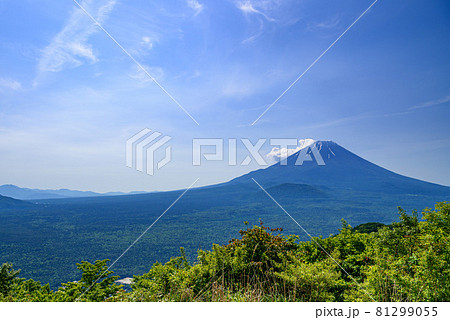 御坂パノラマ台より望む富士山と青木ヶ原樹海 81299055