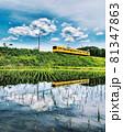 三岐鉄道の田んぼリフレクション 81347863