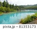北海道美瑛町の青い池の景色 81353173