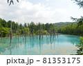 北海道美瑛町の青い池の景色 81353175