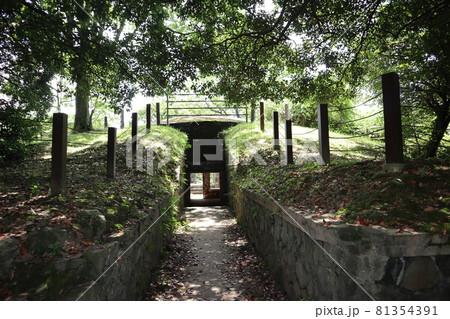 緑の樹々に囲まれた砲台の指令室の遺跡に続く落ち葉の残る道 81354391