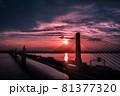 夕焼けと湾岸高速道路を空撮 81377320