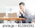 ノートPCでビデオ通話をするビジネスマン 81384391