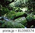 白谷雲水峡 81398374