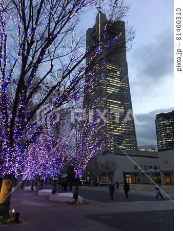 横浜ランドマークタワーを彩る木のイルミネーション 81400310