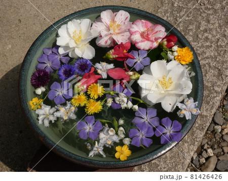 花手水に浮かぶ色とりどりの花・般若寺 81426426