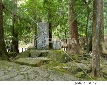 那智の瀧につづく石畳と石碑・飛瀧神社 81428582