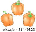 オレンジ色のパプリカ(線1色) 81449323