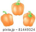 オレンジ色のパプリカ 81449324