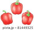 赤いパプリカ(線1色) 81449325