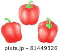 赤いパプリカ 81449326