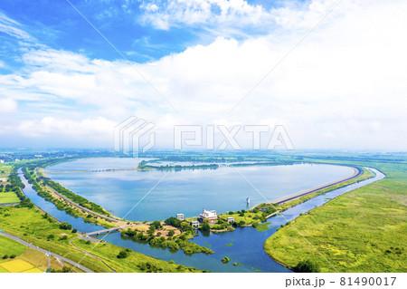 夏の早朝の渡良瀬遊水地(栃木県栃木市) 81490017