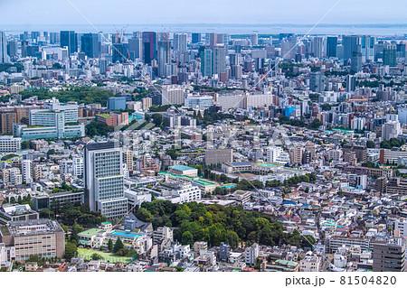 日本の東京都市景観 渋谷区広尾の街並みなどを望む(奥は港区や品川区) 81504820
