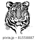 墨絵の虎 81558887