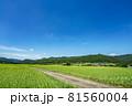 田園風景・爽やかな青空 81560004