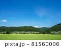 田園風景・爽やかな青空 81560006