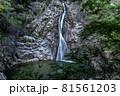 兵庫県・布引の滝 雄滝 81561203