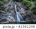 兵庫県・布引の滝 雄滝 81561206