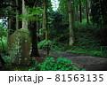 「旧東海道 箱根杉並木」と刻まれた石碑と街道(神奈川県足柄下郡箱根町) 81563135