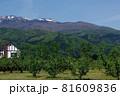 新緑の山里 新緑の春山 81609836