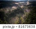 朝霧漂う山間の風景 81673638