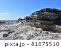 城ヶ島・火炎構造の地層 81675510